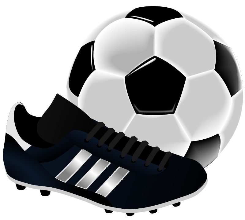 Soccer Ball Shoe